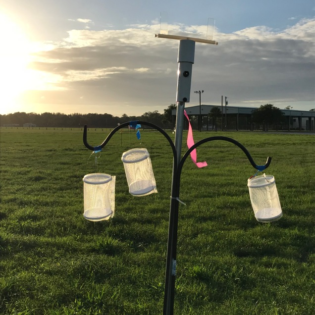 Field cages and spinner set up in the field