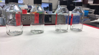 CDC Bottle Bioassay